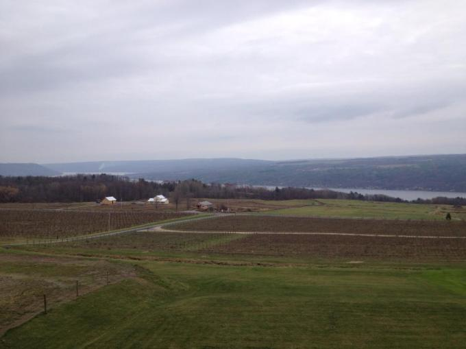 View of Keuka Lake from Heron Hill Winery