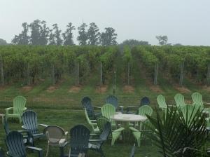Va La's Little Vineyard
