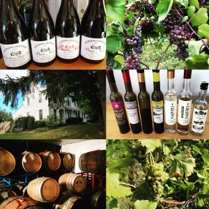 A Collage of My Experience at Hudson-Chatham Winery