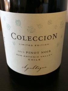Apaltagua Colección 2013 Pinot Noir, San Antonio Valley, Chile